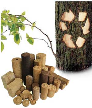 advantages of biomass briquettes