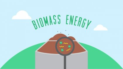 what's the feature of biomass energy