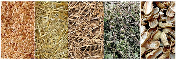biomass pelelts raw materials