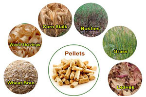 raw materials as biofuel pellets
