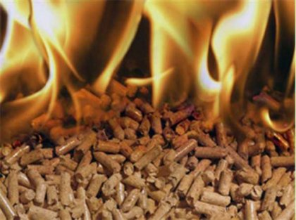 How to make switchgrass pellets for fuel