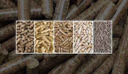 Wood pellet in the emerging Asian biomass market